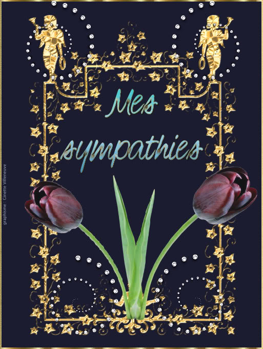 Section images Mes sympathies Sympathies-par-ginette-villeneuve-3