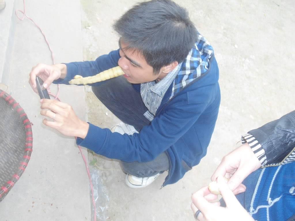 Kỉ niệm Bắc Giang - đầu xuân 2012 DSC04434
