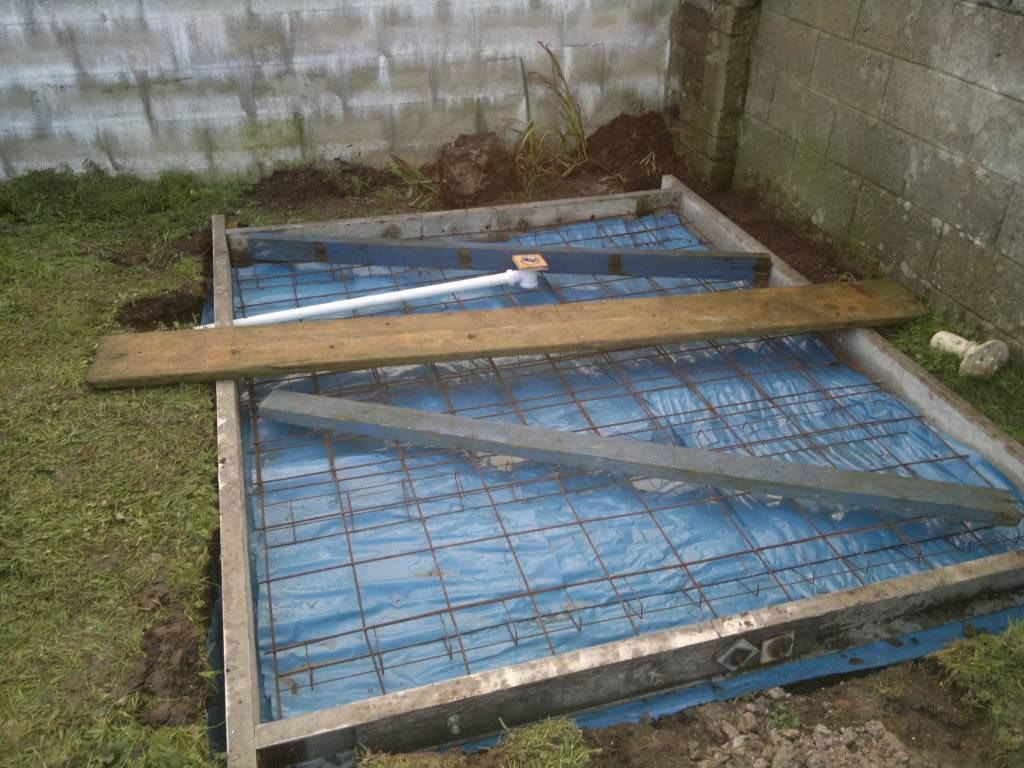 A Fishroom/shed is born 02012012221