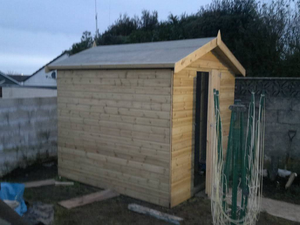 A Fishroom/shed is born 15