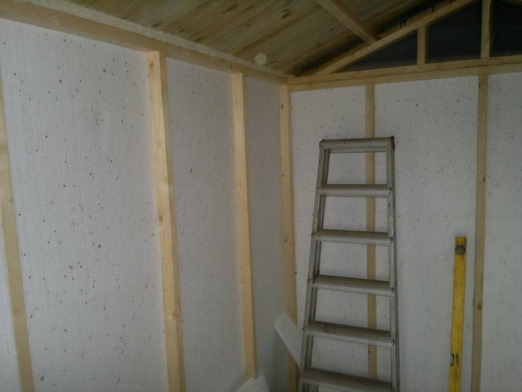 A Fishroom/shed is born 17