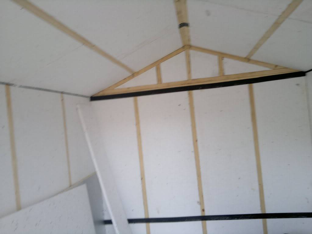 A Fishroom/shed is born 19