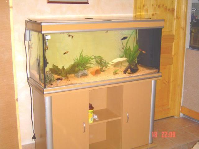 L'aquarium 200 L de Thierry 34 Aqua1