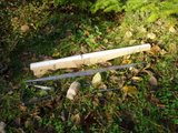 My bone inlay crossbow Th_PB060004