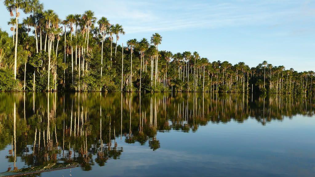 Peru Fotos!! :D LakeSandoval