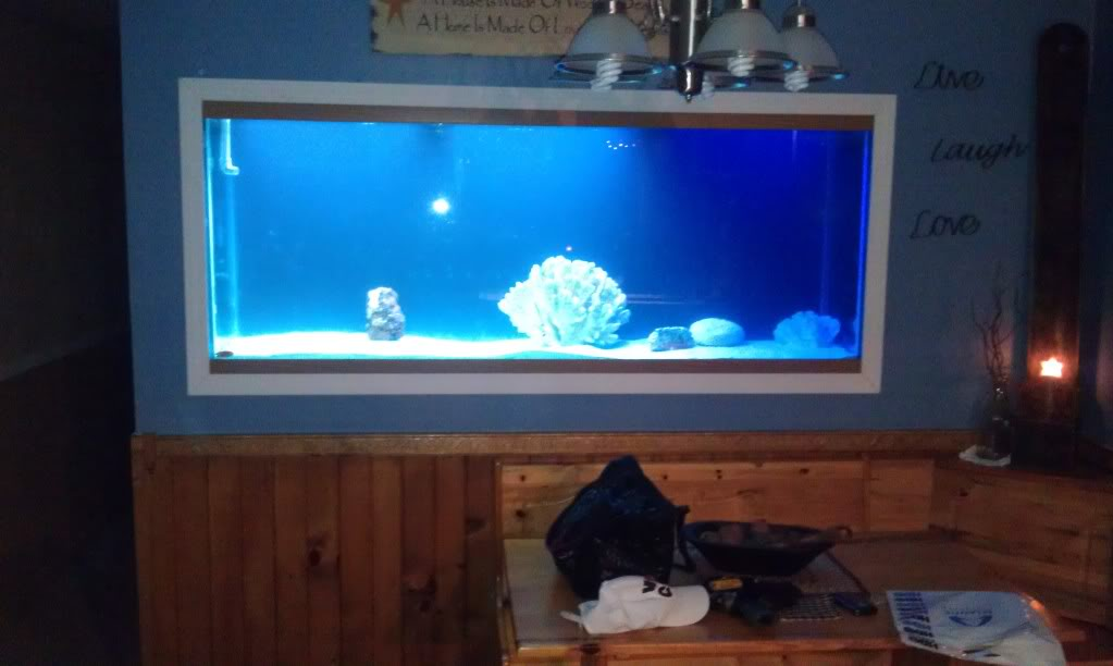 My Latest Project Aquarium3