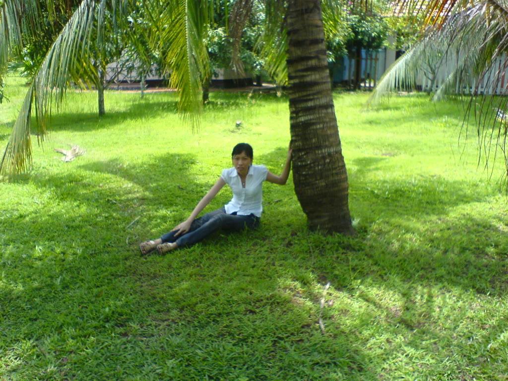Những người cô đơn..!! DSC01168