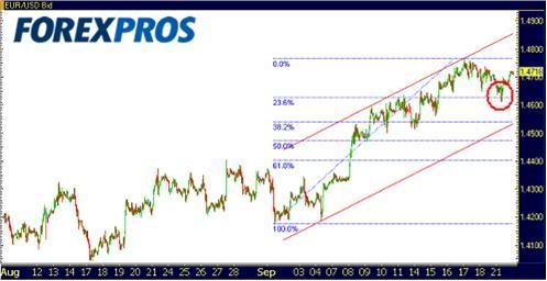 Dolar Euro 1-1