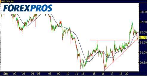 Dolar Euro 3