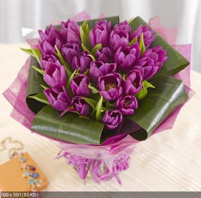 Поздравляем с Днем Рождения Елену ( l1j2xrf) 52625af9ad0ed2d77174b39e5d98e44a