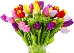 Поздравляем с Днем Рождения Ольгу (Olja) 6c1b575b209e17241f93bb33e7bfce60