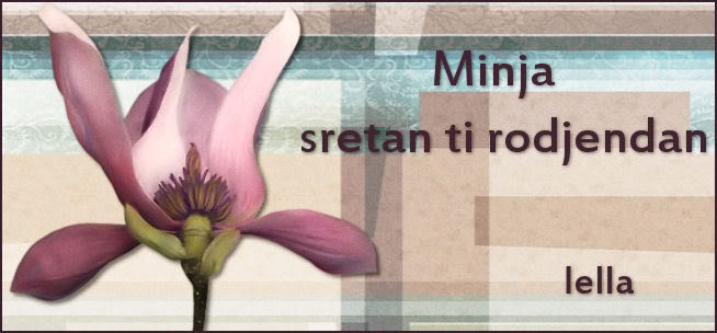 MINJA SRETAN TI RODJENDAN :) Minja