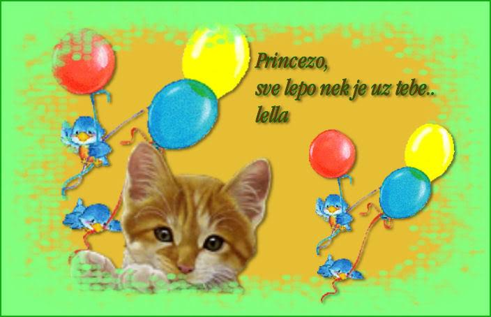 Princeza Cestitka5