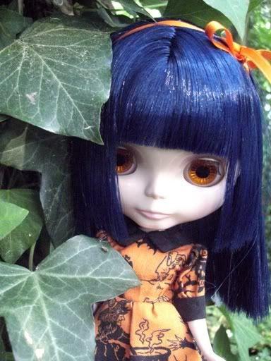 Asian Butterfly Encore (ABe) // SBL CIMG5467