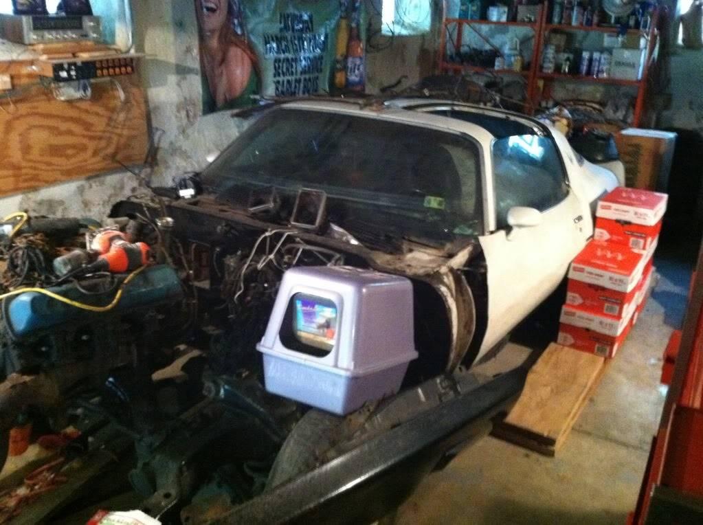 garage boner IMG_0386