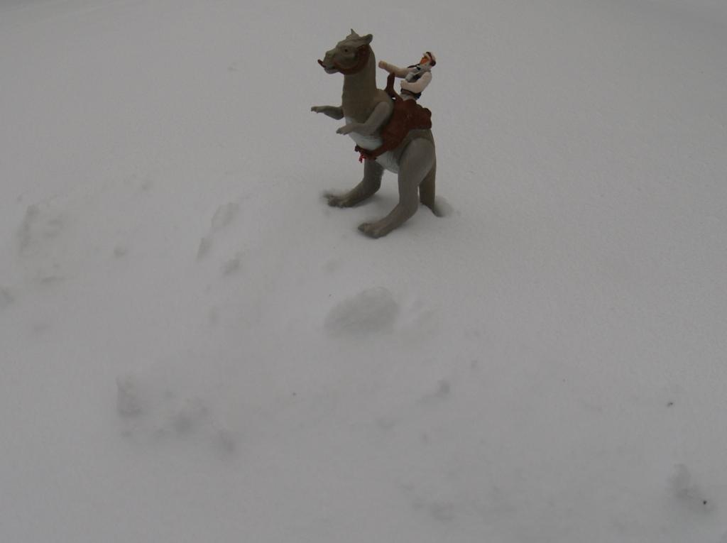 Snow storm on Hoth. 003_zps0erqrbso