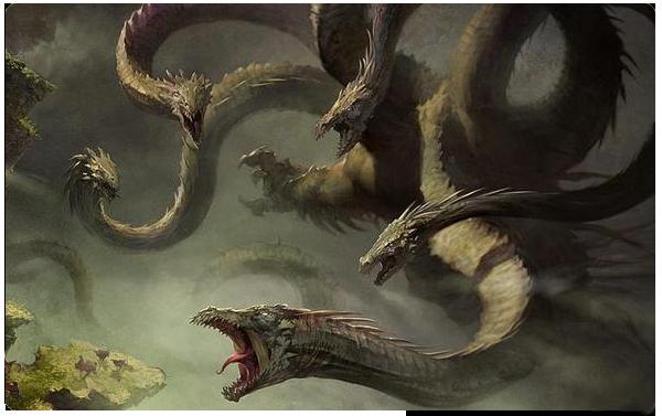 Registro de Imágenes Originales (Sólo si usas alguna) Hydra