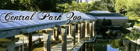 -Central Park Zoo