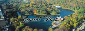-Central Park