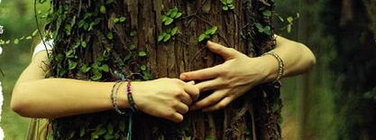 [Técnica] Conexión y comunicación con árboles.  Jhb