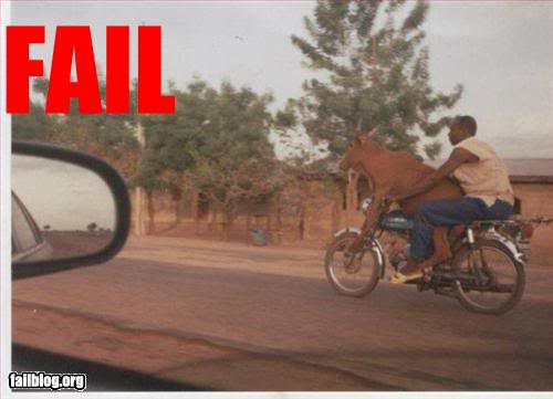 Fail! Epic-fail-cow-driver-fail