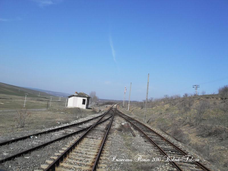 603 : Zorleni - Falciu Nord - Prut SDC10132copy