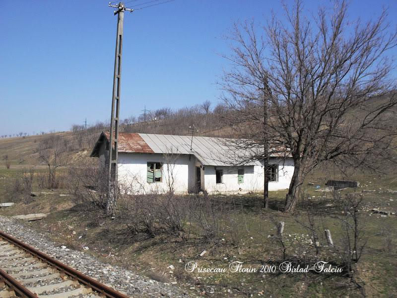 603 : Zorleni - Falciu Nord - Prut SDC10136copy