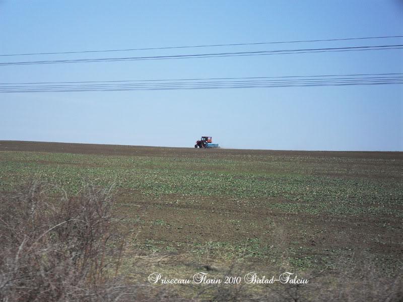 603 : Zorleni - Falciu Nord - Prut SDC10255copy
