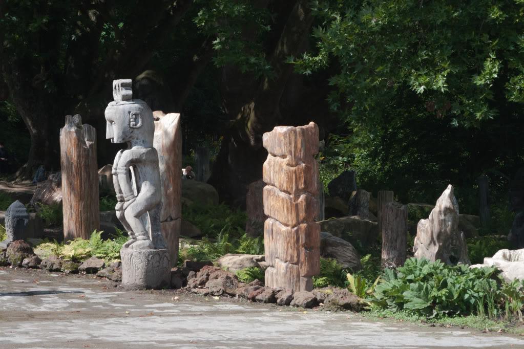 Structures et bois fossiles Cl-4
