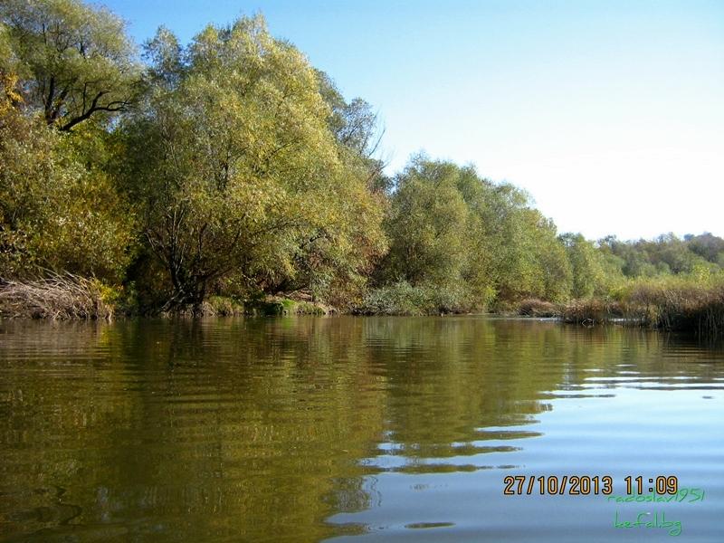 Риболов 2013 ... - Page 2 IMG_0520_zpsb054e252