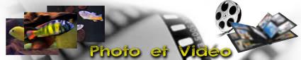 lecuisto62