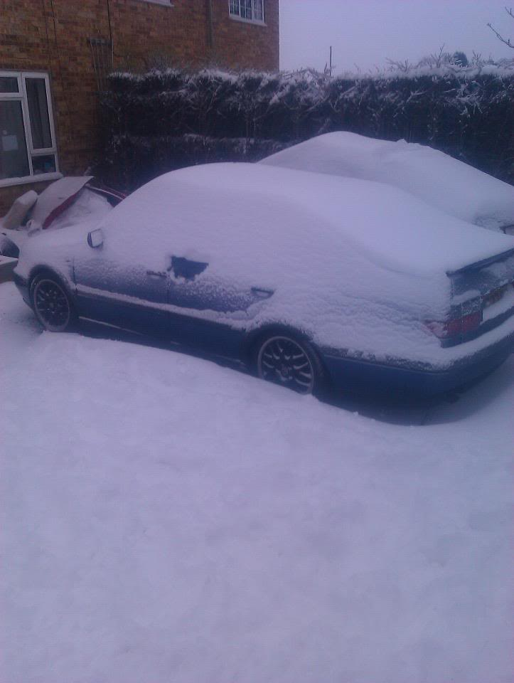 dubs in the snow Ventosnow