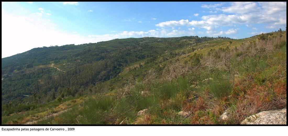 Escapadinha pelas paisagens de Carvoeiro 13-paisagenscarvoeiro