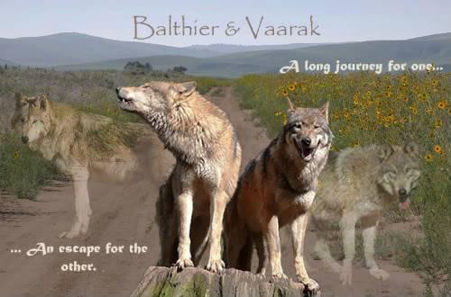Akka's lupus specus BalthierVaarak1