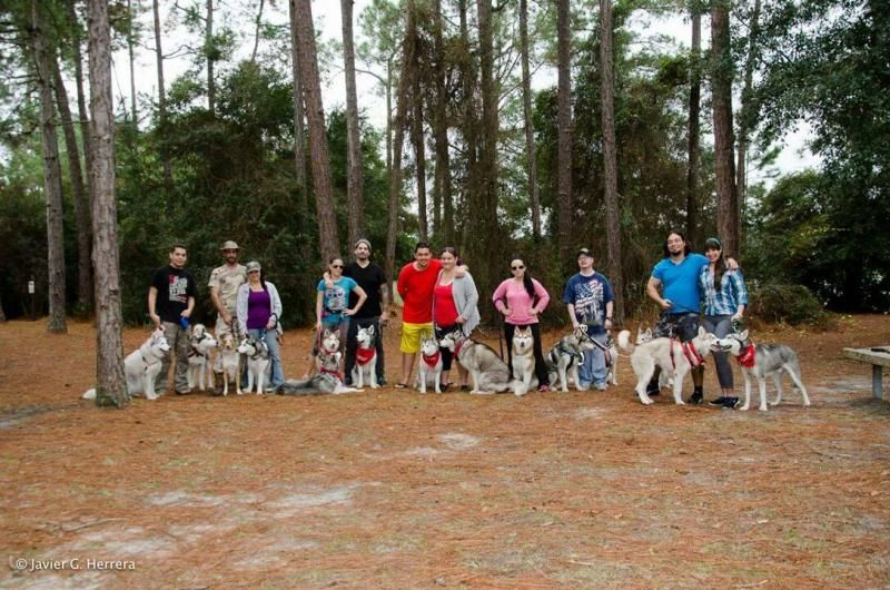 2014 SFL Snowdogs Camping Trip  - **with videos** 10828067_10152797306380971_1017617442293074631_o_zpsd9a66917