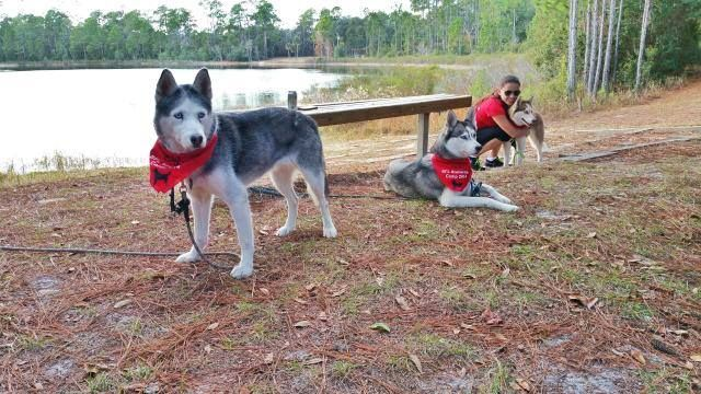 2014 SFL Snowdogs Camping Trip  - **with videos** 551439_10152792988930971_7691131905542425095_n_zps7939ec90