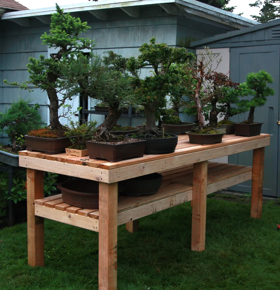 Bonsai Bench