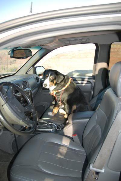 Arizona Roadtrip 09 Roadtrip09067