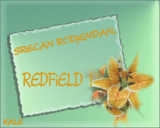 Redfield REDFIELD
