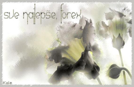 forex ,sve najlepse Forex