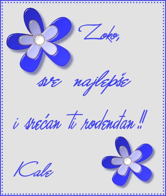 Zoko,srecan rodendan!!! Zoka