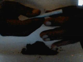 Hands, fotografía Video_00001-1