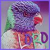 Cindee's~ s t u f f  :D Icon3