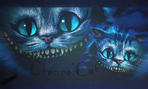 Cindee's~ s t u f f  :D Chesirecatblend