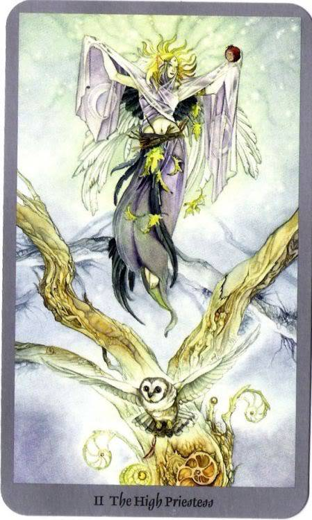 Tarot Worskshop The-high-priestess-shadpwscapes-tarot