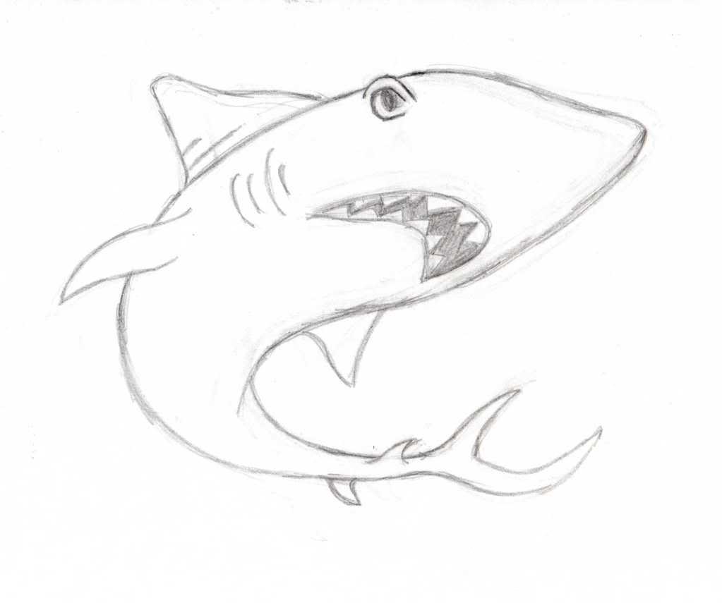 Algunos dibujoos Cesupi005