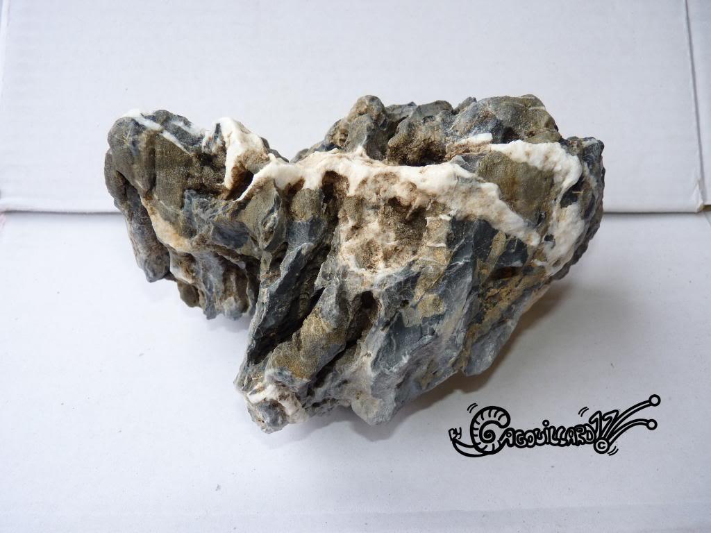 dragon stone blue - pierre bleu du dragon (chine) P1020596