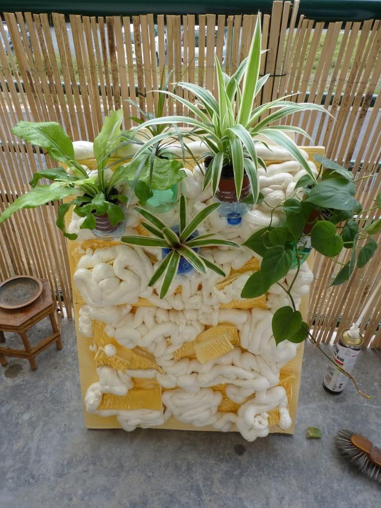 [résolu]Projet en cours mur végétal et décor de fond d'aquarium P1050403