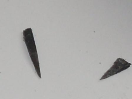 Nasty Bull Bar Splinters ! SDC11732