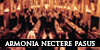 Armonia Nectere Pasus | Elite | Nuevo Boton9